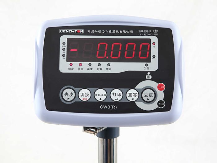 上海常衡BW 称重迅速 操作简便 工作稳定可靠 操作简单 高精度电子仪表