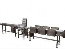 上海常衡水果称重分拣机|水果重量分级机 自动分类秤 自动上料机