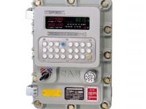 韩国凯士 CAS EXP-8015A 化工厂 包装秤 分选秤 肥料秤 防爆仪表